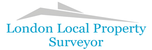 My Local Surveyor logo