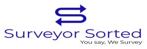 Surveyor Sorted logo