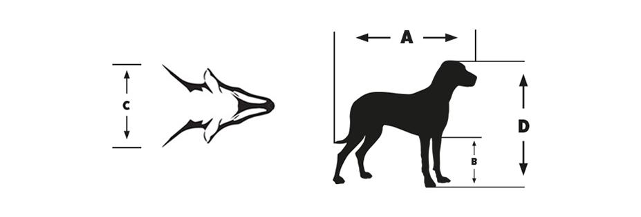 Dog crate diagram