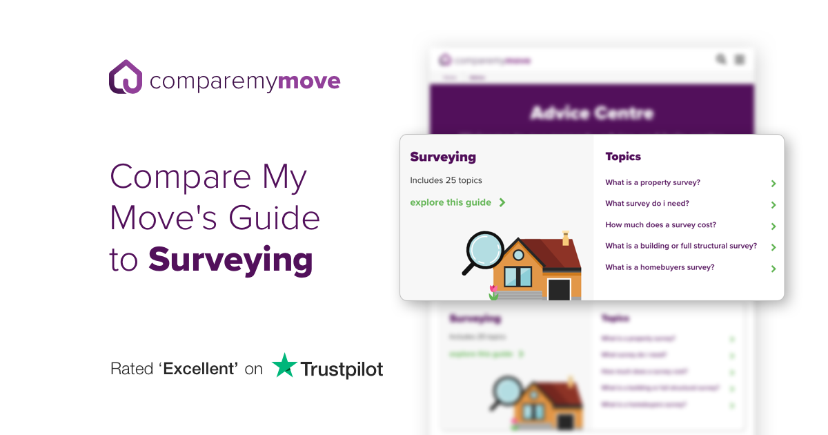Expert Property Survey Guides Advice Compare My Move